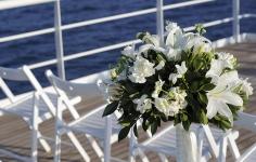 Акватория свадьбы
